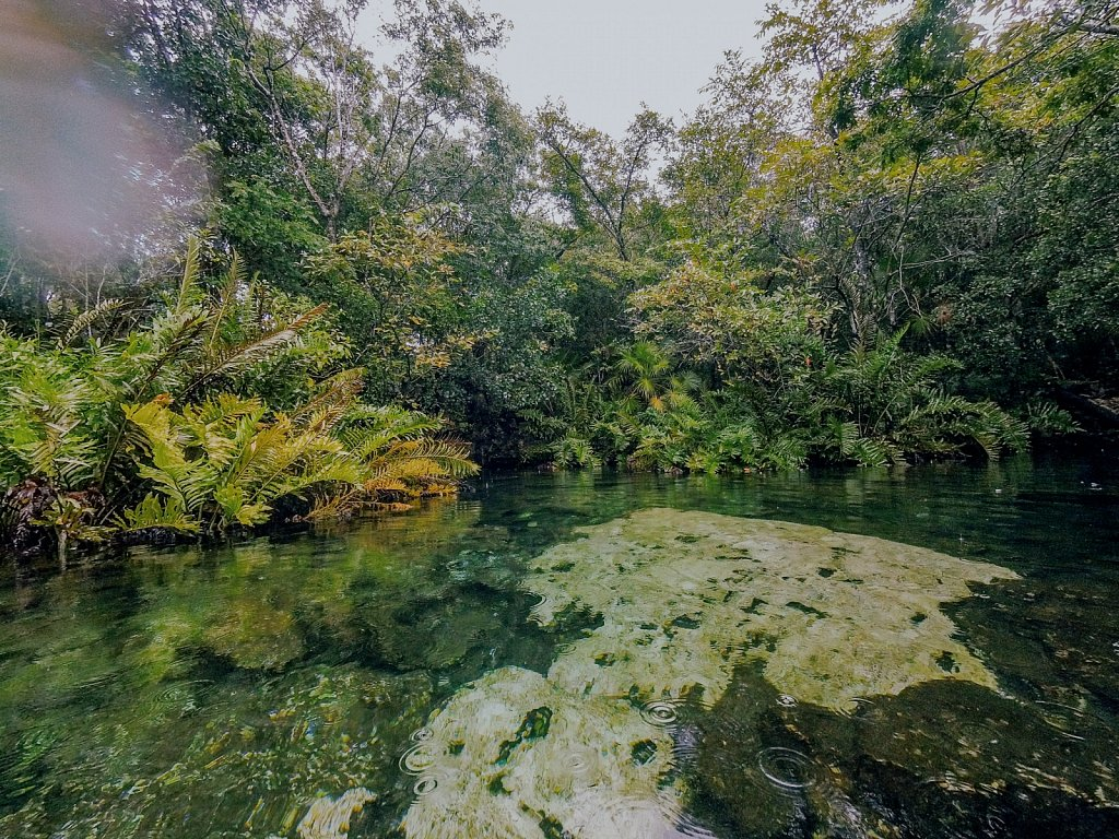Cenotes-1.jpg