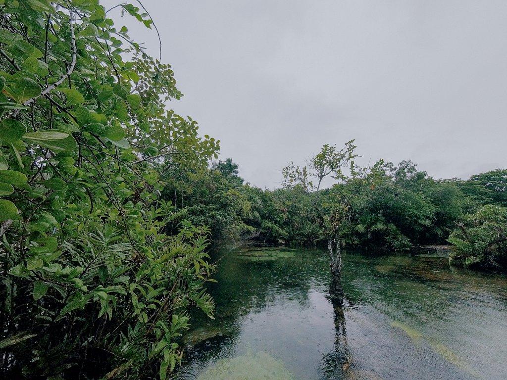 Cenotes-2.jpg