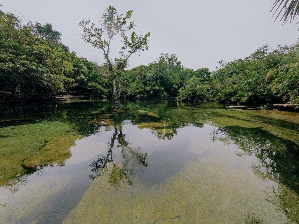 Cenotes / Mexico