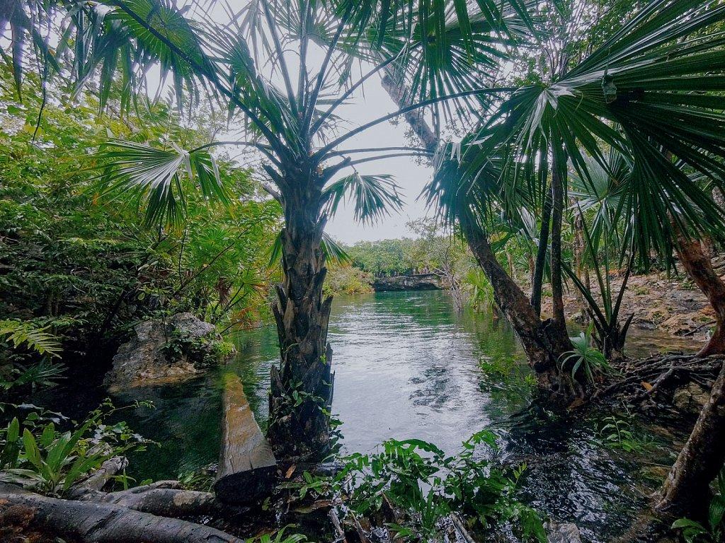 Cenotes-10.jpg